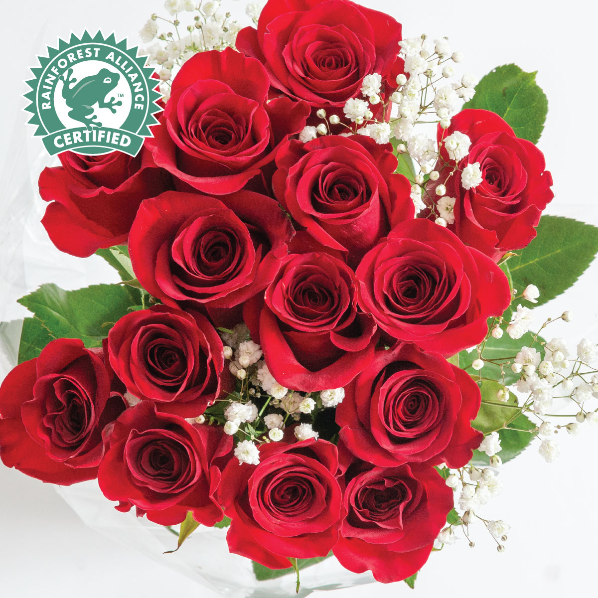NEW! Premium 14-Stem Rose Bouquet